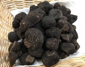 La truffe Melanosporum est la vedette au cours de cuisine d'Hubert Maetz au Rosenmeer